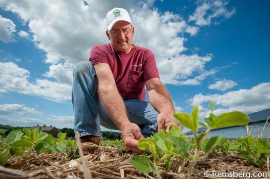 Jim HersheyHershey FarmsElizabethtown PA